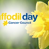 Daffodil Day Approaches