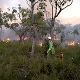 Aireys Inlet Planned Burn